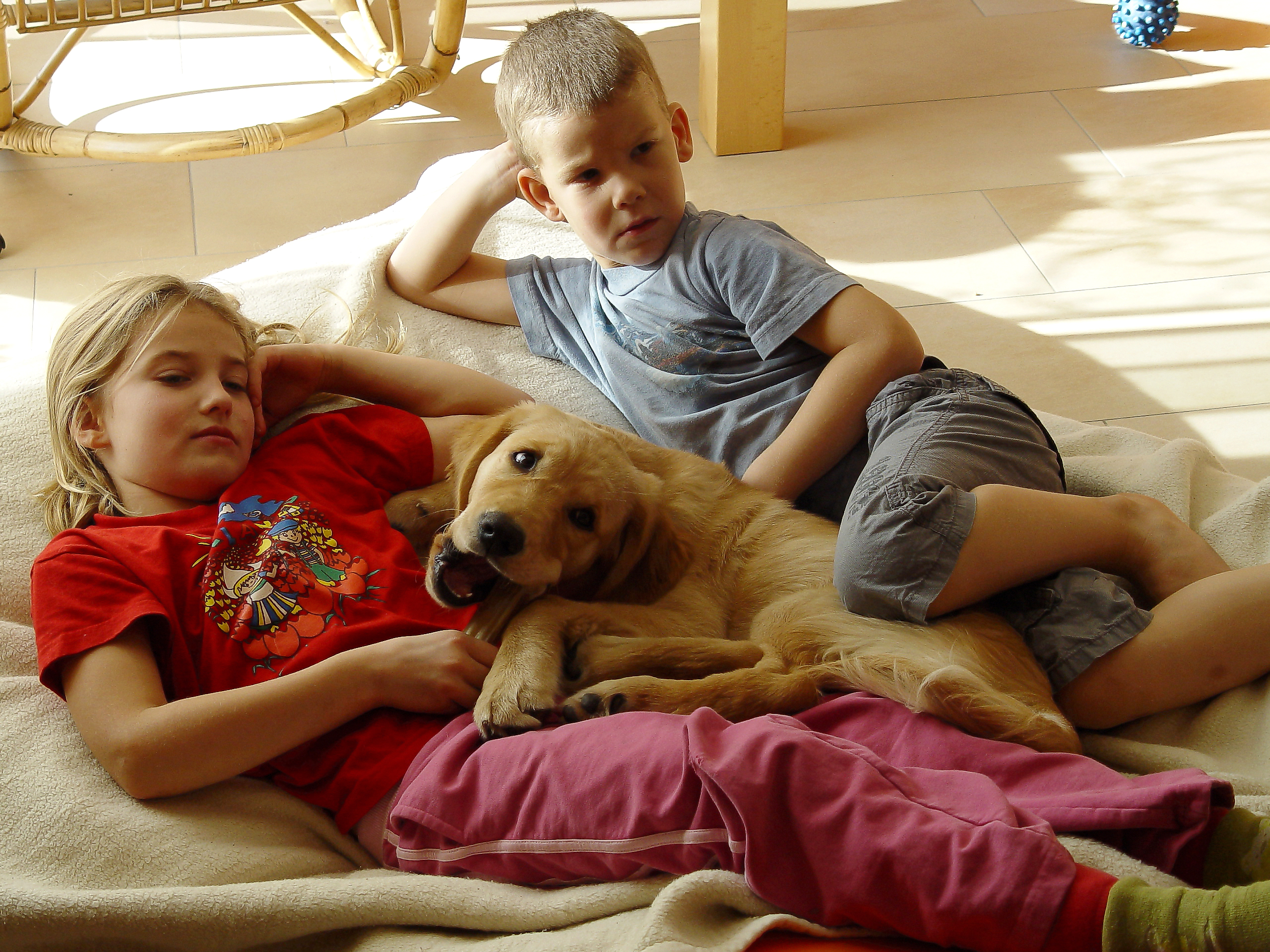 Tipps für ein glückliches Familienleben | DieNanny.org ...
